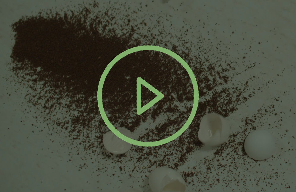coffee and egg shells play video